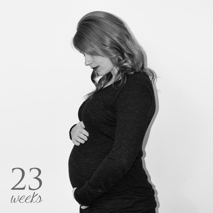 week23-bw